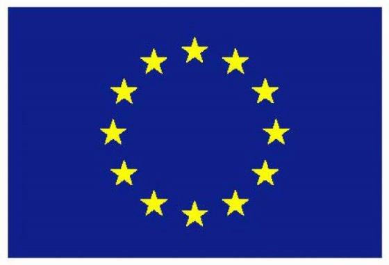 eu-flag[1]
